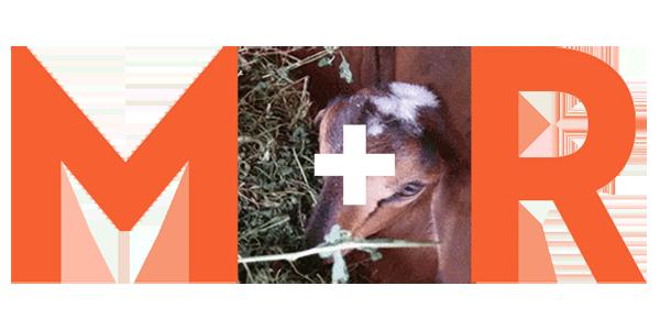M+R Strategic Services